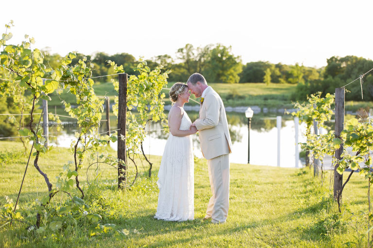 Quad cites wedding photographer parker run vineyards big red barn quad cities wedding photographer amanda oakes photography amandaoakesphotography junglespirit Gallery