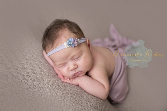 Quad cities newborn photographer geneseo newborn